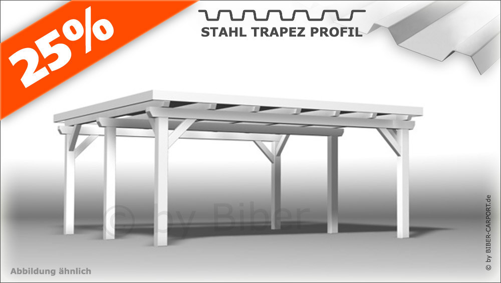 Bausatz 5 0 X 5 5m Pultdach Carport Mit Stahl Trapez